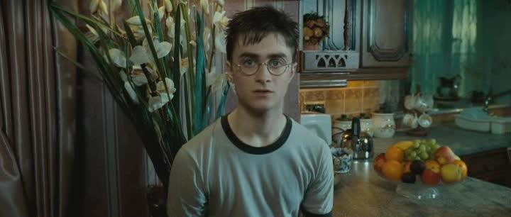 Harry Potter 5 Fenixuv rad 2007 DVDRip XviD CZ Dabing avi